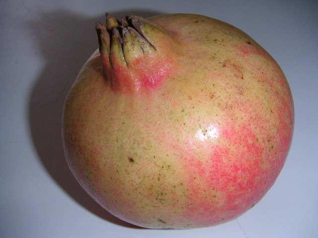 granada fruto