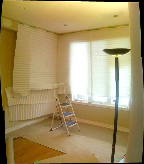Learn How To Paint A Room Like A Pro Dvd
