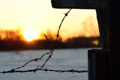 winter sunset sky sun snow tree set barn fence wire glare farm brian flare fisher barbed bfish brianfisher thisisbrianfisher
