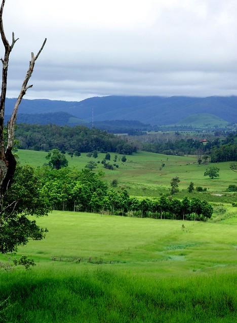 Atherton Tablelands Australia  city photo : Atherton tablelands australia | Flickr Photo Sharing!
