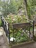 Tombe de Pierre Desproges au cimetière du Père Lachaise.
