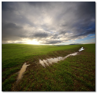 Enough Rain Already! (Vertorama)