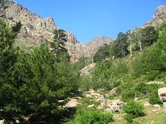 Haute vallée de la Lonca au départ du refuge de Puscaghja
