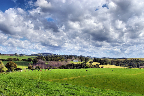 cloud clouds landscape nsw comboyne bestofaustralia davewhiteman davidwhiteman purfleetannex just1thing