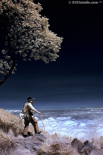 The Traveller @ Mount Lawu  (Infrared)