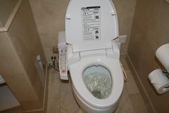 Japanese toilets - Toilettes Japonaises