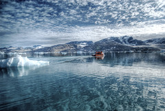 Reflections on the Arctic Sea