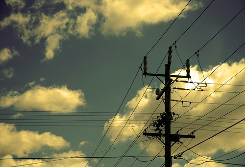 {17/365} powerlines