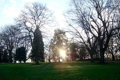 irving park.