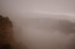 The Foggy Canyon