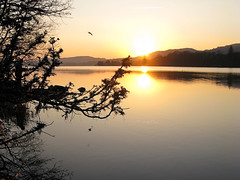Lake Coniston - sunset