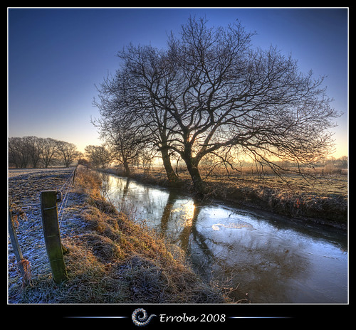 tree ice grass photoshop sunrise canon fence rebel frozen bravo frost belgium belgique tripod belgië sigma naturereserve tips remote brook 1020mm erlend hdr mechelen cs3 3xp photomatix tonemapped tonemapping xti 400d vertorama hetbroek erroba robaye erlendrobaye