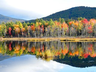 New Hampshire Autumn