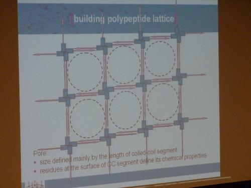 Team Slovenia peptide nano-structures