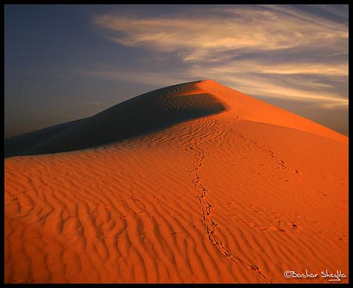 sunset sky sahara sand desert dune libya lybia libia brack sead libyen صحراء sabha ليبيا líbia sebha libië alshati libiya sahran liviya رملة libija سبها либия توارق ливия լիբիա ลิเบีย lībija либија lìbǐyà libja líbya liibüa livýi λιβύη לוב الزلاف azzallaf ايموهاغ هقار
