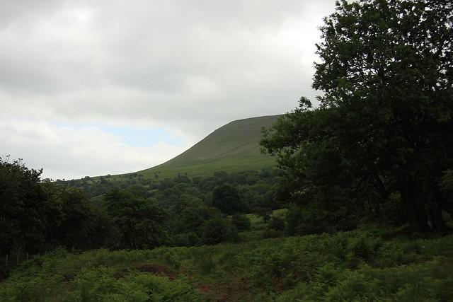 An English summer, version 2008