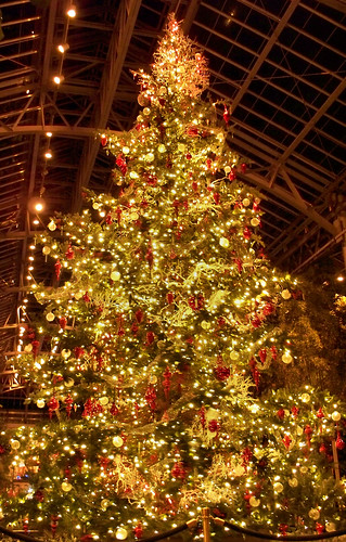 The Giant Spinning Christmas Tree by katiemetz, on Flickr