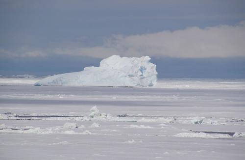 688 Weddell Sea