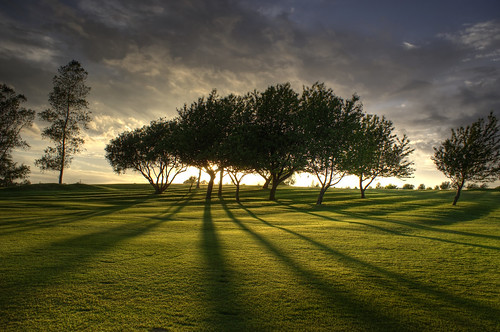 trees light sunset shadow summer sky sun green nature grass clouds golf lawn surreal soe naturesfinest shadowtrees shadowoftrees mywinners platinumphoto aplusphoto theunforgettablepictures goldstaraward worldglobalaward goldenmasterpiece saariysqualitypictures shadowinthetrees shadowofthetrees