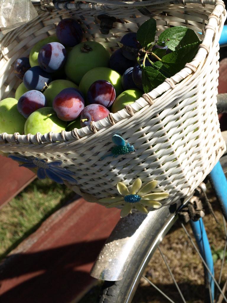 kettler bike basket kettler bike bicycle christmas card. Black Bedroom Furniture Sets. Home Design Ideas
