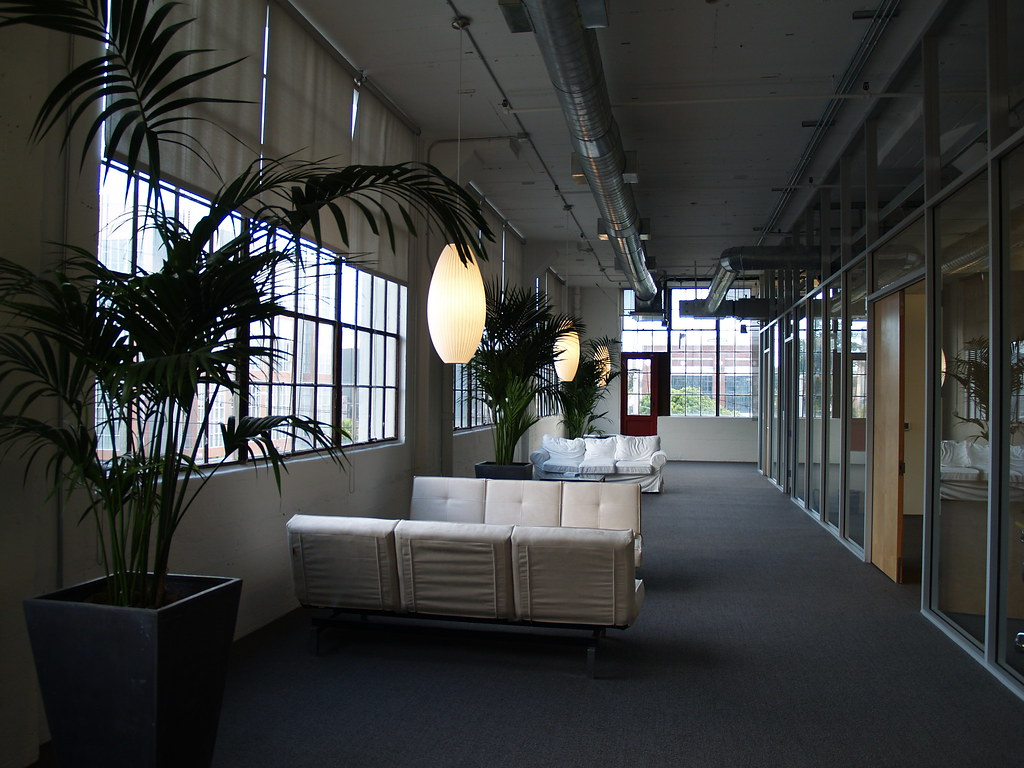 SF office with plants