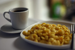 dieta bialkowa biegunka