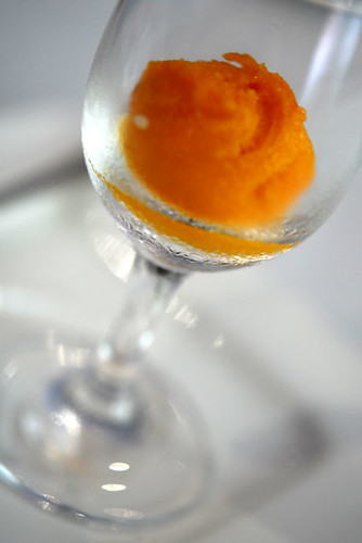 Mango and Lavender Sorbet - DSC_0387
