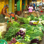 Greens and Vegetables at Market - Rangoon, Burma (Yangon, Myanmar)
