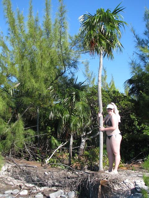 Palm Forest Dr N Delray Beach Fl