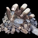 Stone Hand by ♣ Photoshop Art♣