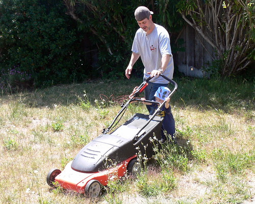 "Davey helps mow the ""lawn"""