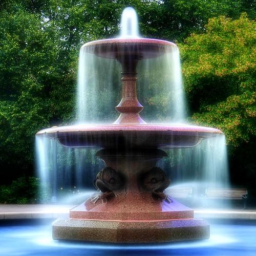 Aromaterapia e fiori di Bach per essere nella Pienezza
