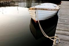 Nova Scotia 08
