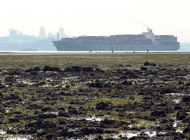 Cyrene Reefs: next to major shipping lanes