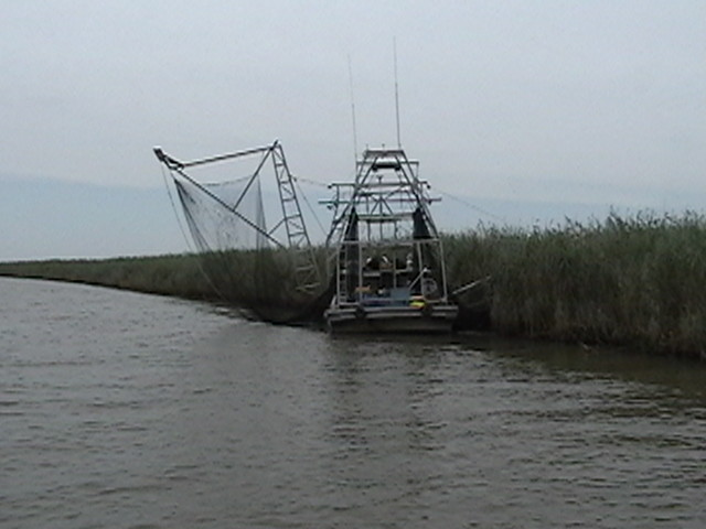 Photo for Fishing camps for sale in louisiana