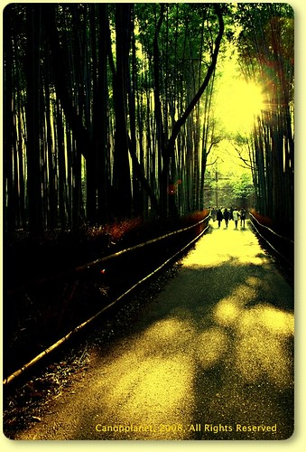 Path in Kyoto's March