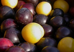 plum, grape, produce, fruit, food,