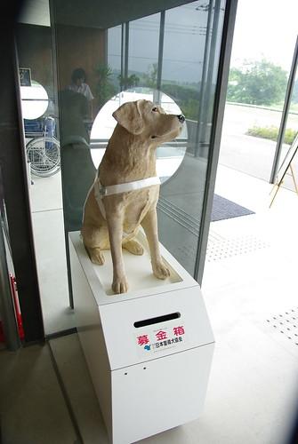 盲導犬協会募金箱