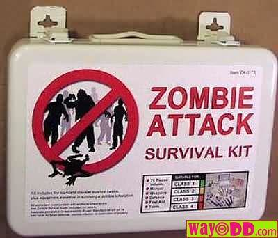 Caution: Zombies All Over: Basic ideas for a Zombie ...