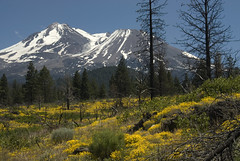 Lava Beds and Oregon