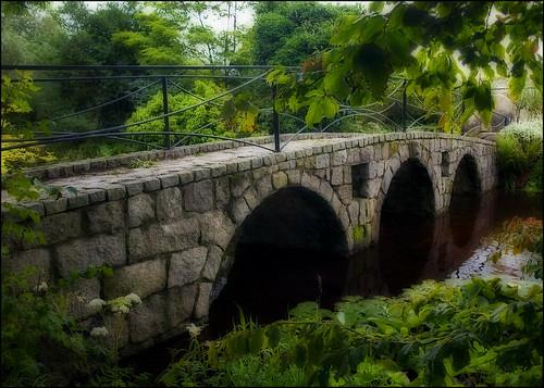 bridge water crossing olympus orton e510 cocarlow altamontgardens