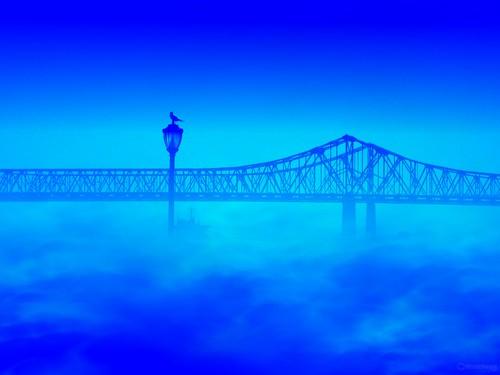 blue bridge mist lamppost bird nola singintheblues 1110 16 6410 4 500july2010 redbub i1111 july 2011 500