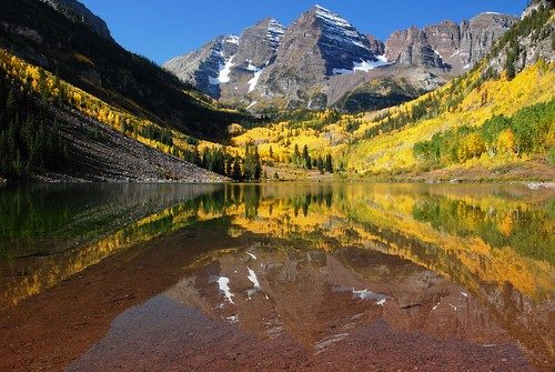 Aspen Trees in Colorado at Maroon Bells