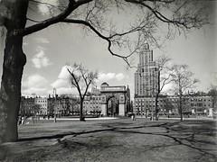 Washington Square looking north, Manhattan.
