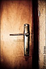007/365 Cellar Door