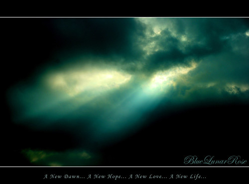 A New Dawn... A New Hope... A New Love... A New Life...