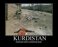 genocide kurd kurdistan كوردستان