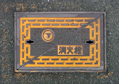 signage(0.0), sign(0.0), picture frame(0.0), number(0.0), house numbering(0.0), manhole cover(1.0),