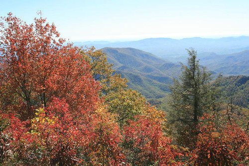 The Blue Ridge Parkway.  Photo © Flickr User: tguttilla.
