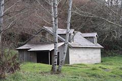 Military Farm Building 6